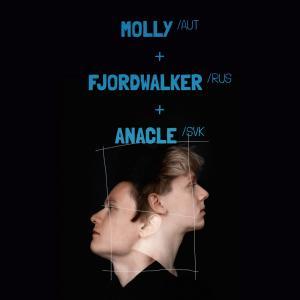 Konzert: MOLLY (AUT, Fjordwalker / RUS, Anacle / SVK) / Trnava