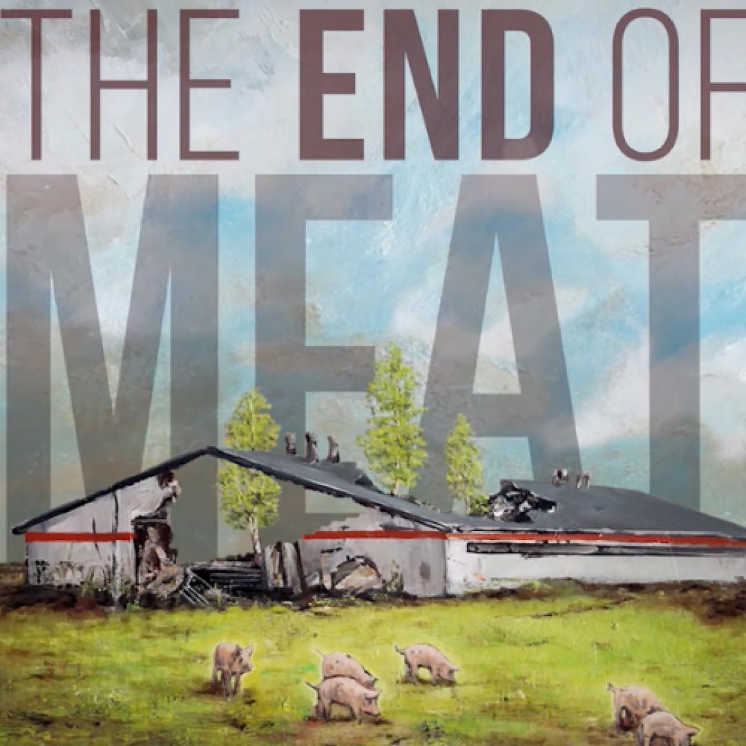 Mäso je pasé / Trnava