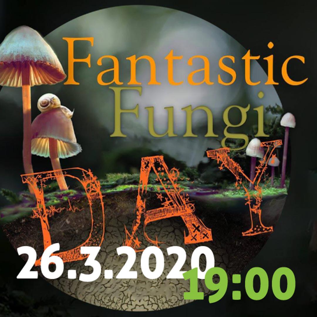 Fantastic fungi - svetové premietanie / Trnava