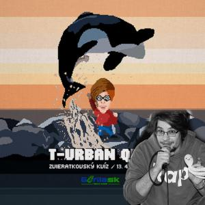 Turban Quiz s Lužinom a Moškom
