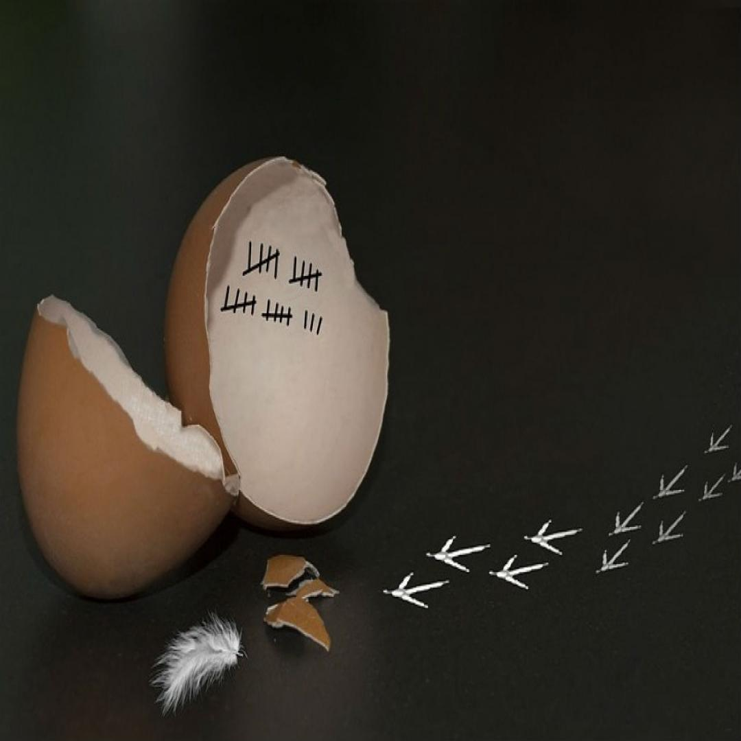 Inscenované čítanie: Ako šlo vajce na vandrovku
